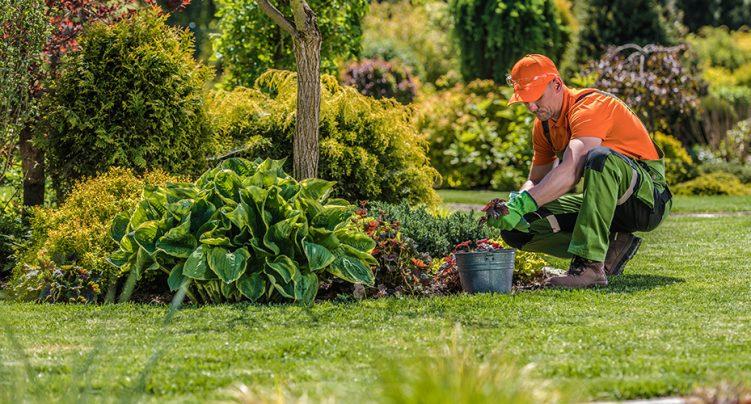 Ouvrier/ouvrière en entretien paysager